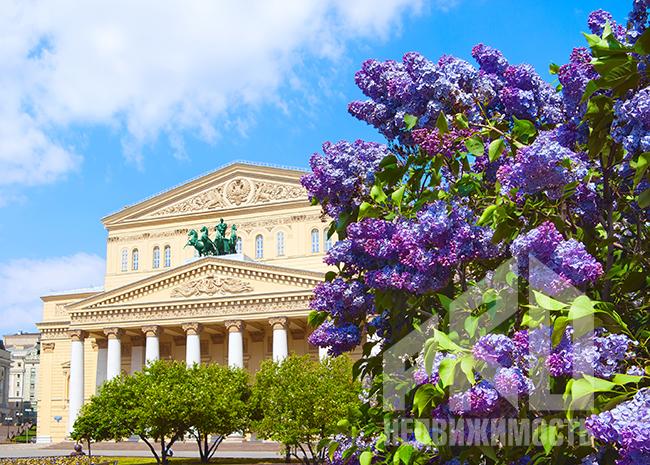 Куда пойти в Москве в выходные с 29 апреля по 2 мая