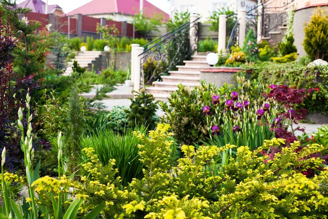 Обустройство загородного участка: клумбы и цветники